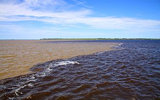 Amazon biome - White water of the Solimões and black water of the Rio Negro converge to form the Amazon River