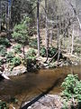 Delaware Water Gap National Recreation Area - Pennsylvania (5677795231).jpg