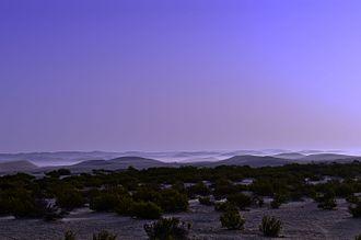Madinat Zayed - Image: Desert on the way to Madinat Zayed