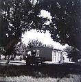 Detskata bolnica vo Gorce Petrov, 1964.jpg