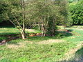 Dh essweiler talbach01.jpg