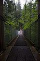 Diez Vista Walk (4650957479).jpg