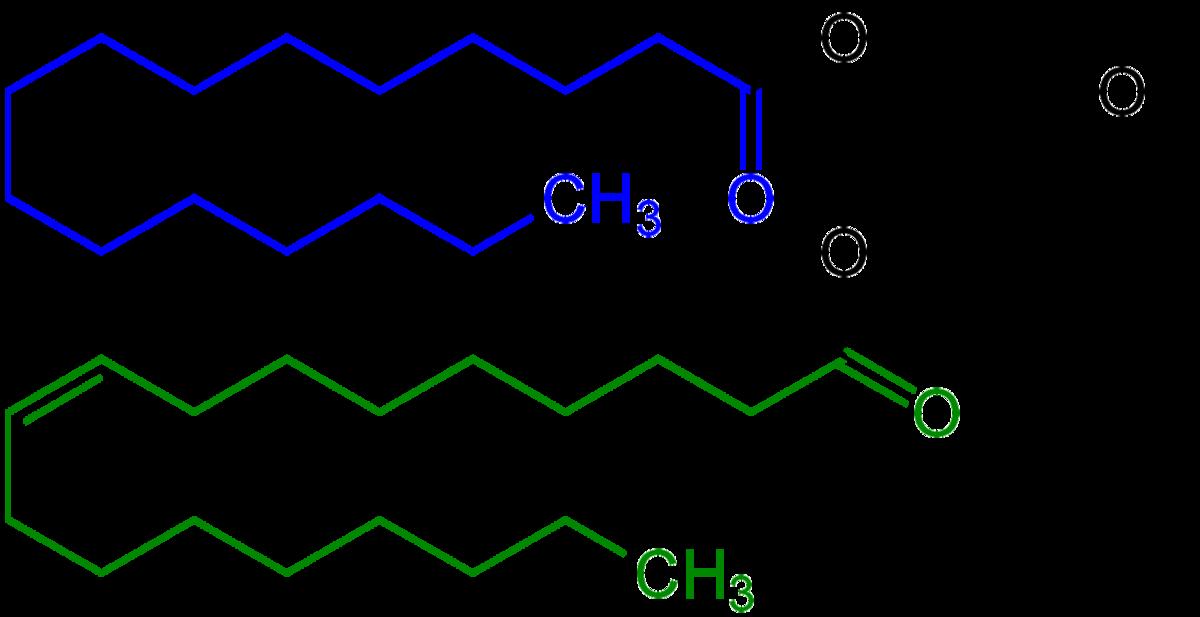 Mono And Diglycerides Of Fatty Acids Wikipedia