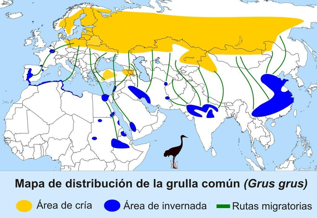 Distribución grullas.jpg