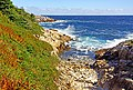 Duncan Cove (23570116410).jpg