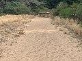 Dunes Charmes Sermoyer 29.jpg