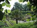 Dutch Garden P6110063.JPG