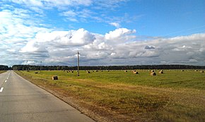 Dzyarzhynsk District, Belarus - panoramio.jpg