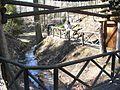 Eberswalde zoo 020.jpg