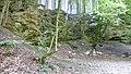 Ehemaliger Nagelfluhsteinbruch im Gleißental 04.jpg