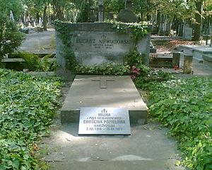 Eligiusz Niewiadomski - Niewiadomski's grave at Powązki Cemetery