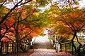 Entsu-ji, Precincts -1 (November 2012) - panoramio.jpg