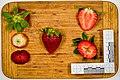 Erdbeeren jm26883.jpg