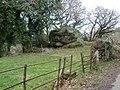 Erratic boulder, near Ellimore - geograph.org.uk - 1197661.jpg