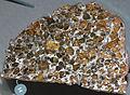 Esquel meteorite, pallasite (14609129767).jpg