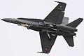 F18 Hornet - RIAT 2009 (3834484111).jpg