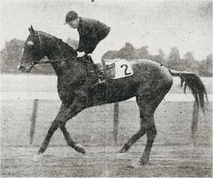 Fair Play (horse) - Image: Fair Play