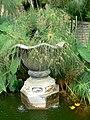 Fale - Giardini Botanici Hanbury in Ventimiglia - 401.jpg