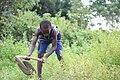 Farmer kid.jpg