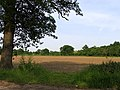 Farmland near Burghfield - geograph.org.uk - 17665.jpg