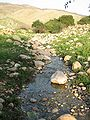 Fatzael Springs and water system 051.JPG