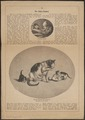 Felis catus - 1868 - Print - Iconographia Zoologica - Special Collections University of Amsterdam - UBA01 IZ22100270.tif