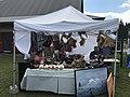 Festival Manitou 2017 07.jpg