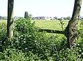 Field Barn Farm - geograph.org.uk - 488440.jpg