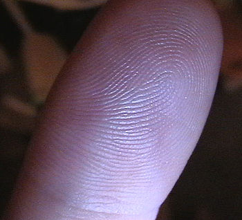 A human thumbprint - a common type of biometri...