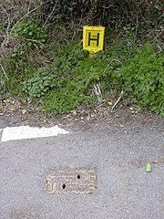 British fire hydrant and sign