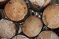 Firewood in Russia. img 17.jpg