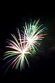 Fireworks - 01.jpg
