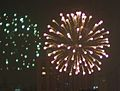 Fireworks - Chinese New Year (4355698880).jpg