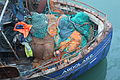 Fishing boats, South Harbour, Ardglass, November 2010 (10).JPG
