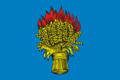 Flag of Belyov (Tula oblast).png