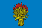 Flag of Belyov (Tula oblast).png