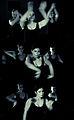 Flamenco-bailarina6.jpg
