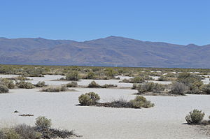 Flanigan, Nevada - View toward Flanigan townsite and the former Western Pacific line, 2015