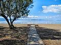 Flickr - ronsaunders47 - BEACH PATH..jpg