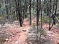 Flinders Ranges SA 5434, Australia - panoramio (190).jpg