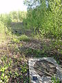 Flines-lez-Raches - Fosse n° 1 des mines de Flines (H).JPG