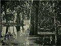 Flooded area on the Ubangi near Duma, 1911.jpg