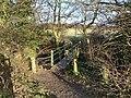 Footbridge to Bonney Dole - geograph.org.uk - 1127306.jpg