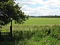 Footpath across Callow Marsh - geograph.org.uk - 892665.jpg