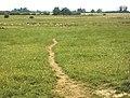 Footpath between Warehorne and Hamstreet - geograph.org.uk - 23318.jpg