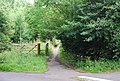 Footpath off Powder Mill Lane to Powder Mills - geograph.org.uk - 1391854.jpg