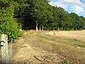 Footpath past Dering Wood - geograph.org.uk - 1428109.jpg