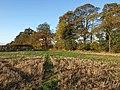 Footpath reaching Sugarswell Lane - geograph.org.uk - 1562352.jpg