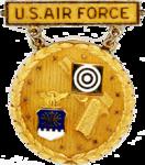 Former USAF Gold National EIC Pistol Badge.png