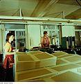 Fotothek df n-35 0000018 Facharbeiter für buchbinderische Verarbeitung.jpg